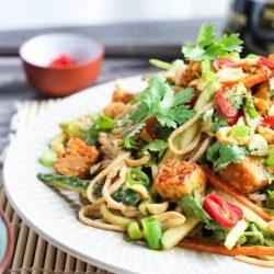 Close up shot of nutty soba noodle salad