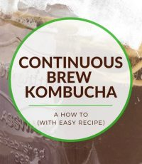 A Continuous Brew Kombucha How-To (with Easy Recipe)