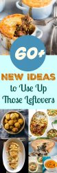 60+ New Ideas for Leftovers. Never know what to do with all your leftover food? With over 60 of the latest ideas for the most common leftovers, you need never throw out food again.